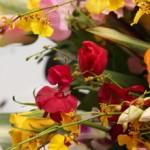 jiyugaoka1st-flower1_w