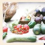 ミコト屋の野菜マルシェ 旅する八百屋